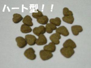 Dscn9147