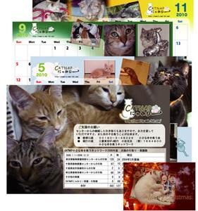 Catd_2